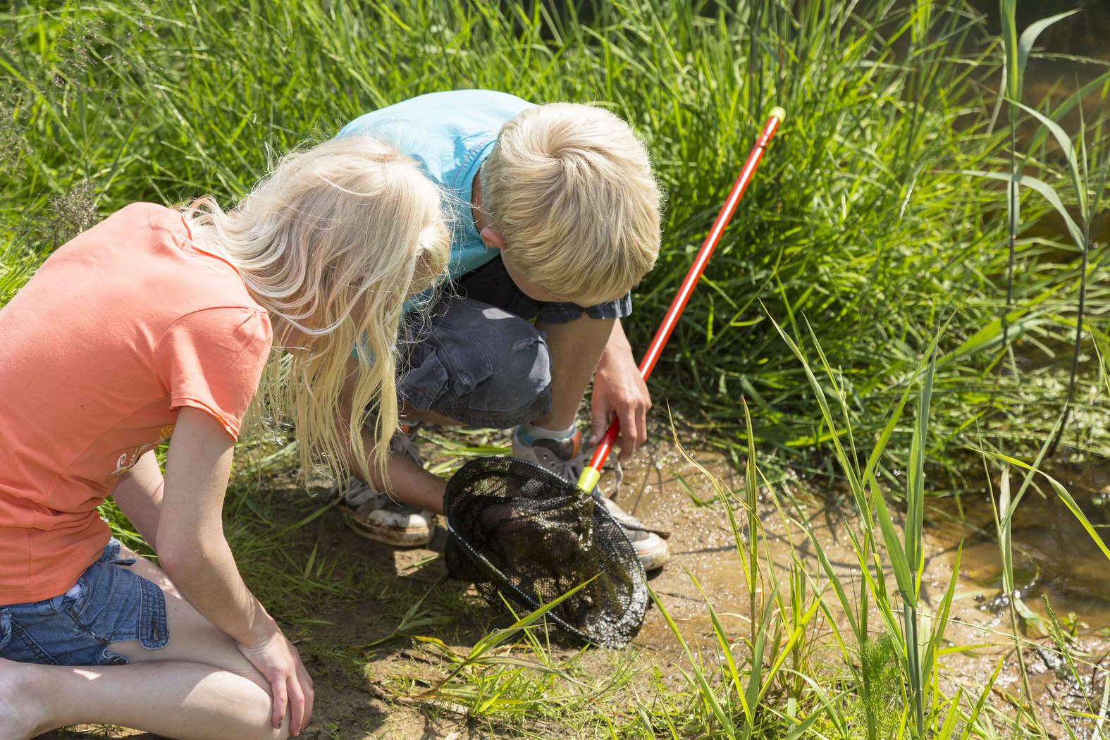 OERRR Waterdiertjes zoeken bij de grote vijver op Landgoed Beekhuizen!